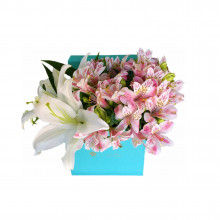 Box Tiffa Liliums y Alstroemerias