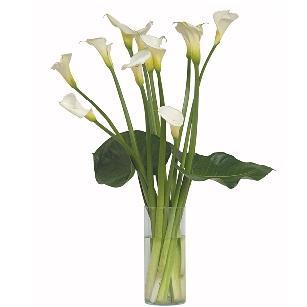 Arreglos Florales Con Calas Envios A Domicilio