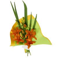 envio de flores 017