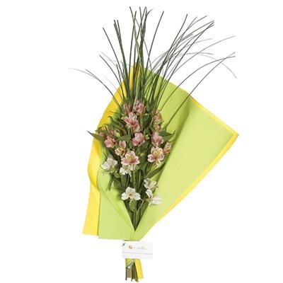 Envio de Flores , Ramo de Alstroemerias Barato