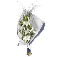 envio de flores 026