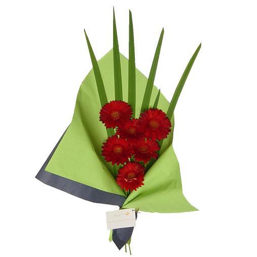 Envio de Flores a domicililio , Ramo de Gerberas Rojas