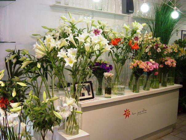 Franquicias De Florerias En Argentina Tu Jardin