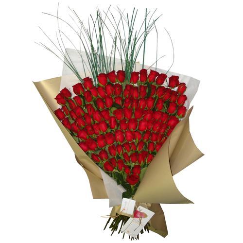 Enviar Rosas , Ramo por 100 Rosas Importadas a Domicilio